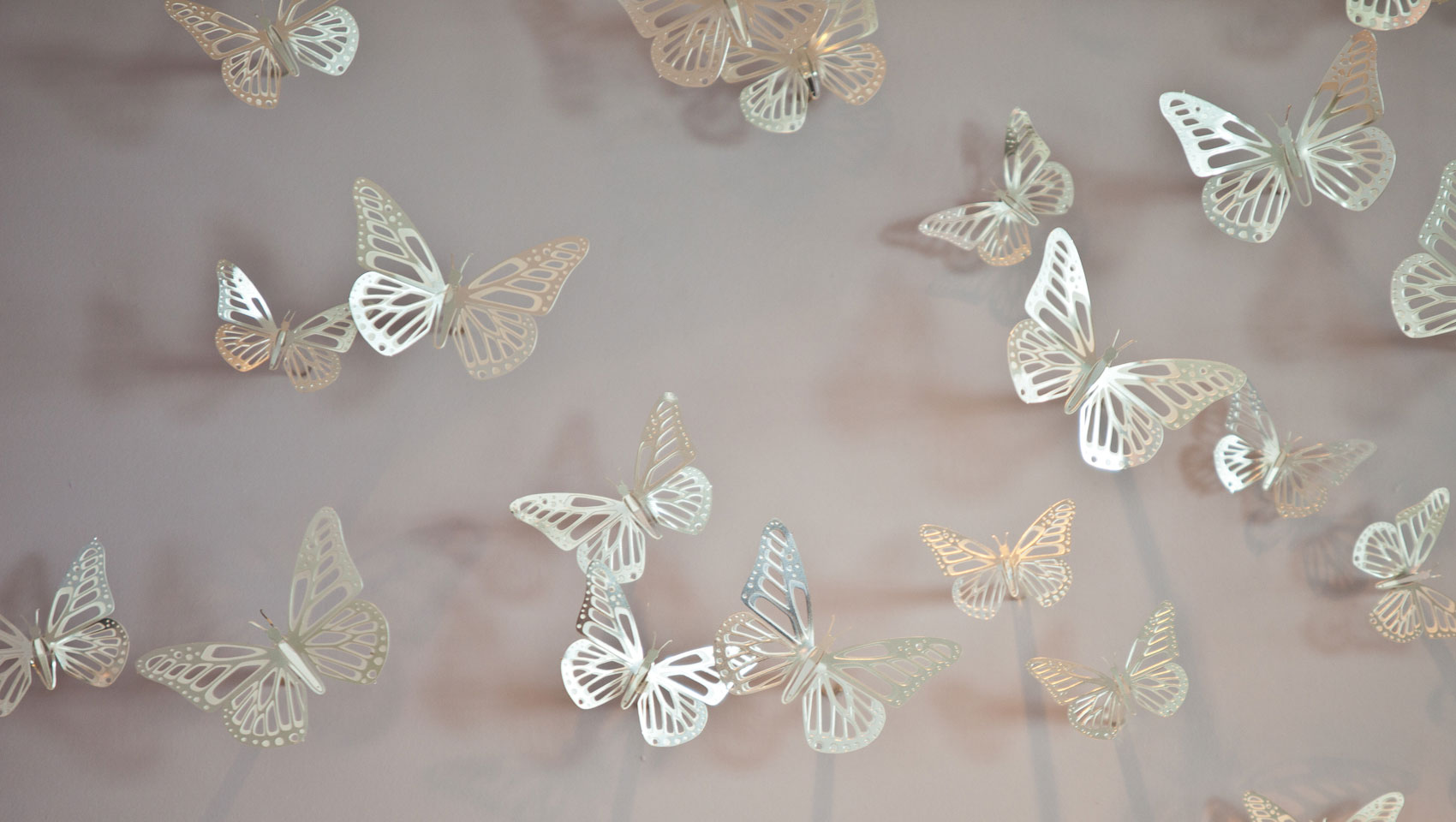 Kimpton Surfcomber Hotel butterfly wall