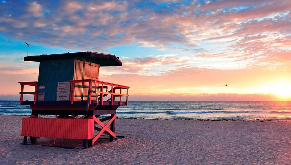 Miami South Beach Surf Shop